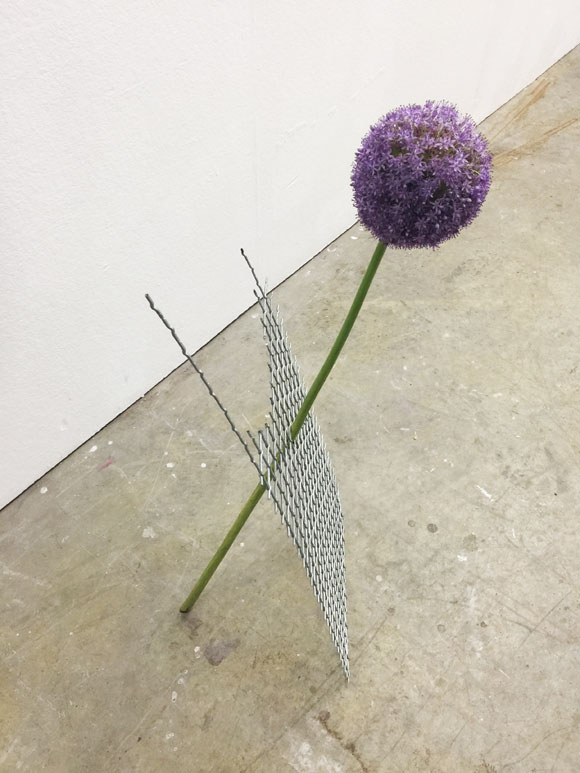 """take care of me"", Allium and aluminium, 2015"